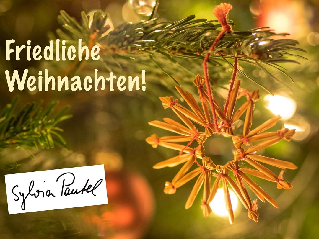 Artikel Weihnachten.Friedliche Weihnachten Sylvia Pantel Mdb
